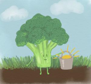 Green veg collecting sunshine 300x276 - Green Poo and Ham